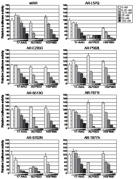 HSP90 inhibitors dose-dependently reduce transactivation activity of wtAR and gain-of-function missense mutants.