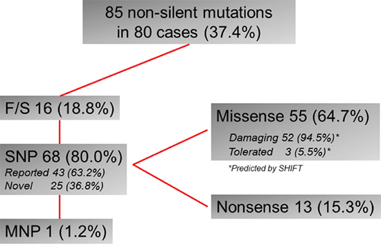 Summary of TP53 mutations in 214 GC cases.