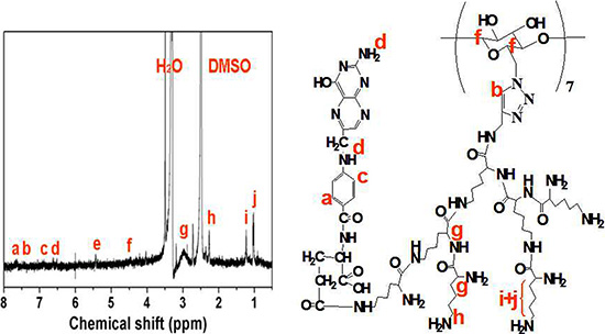 1H NMR spectra of FA-CD-PLLD (DMSO-d6; 25°C).