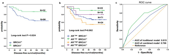 Prognostic value of the AR in TNBC patients was improved by combining BRCA1 status.