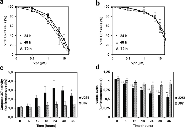 Vpr exhibits cytotoxic effects in a dose dependent manner and induces apoptosis in glioma cell lines.