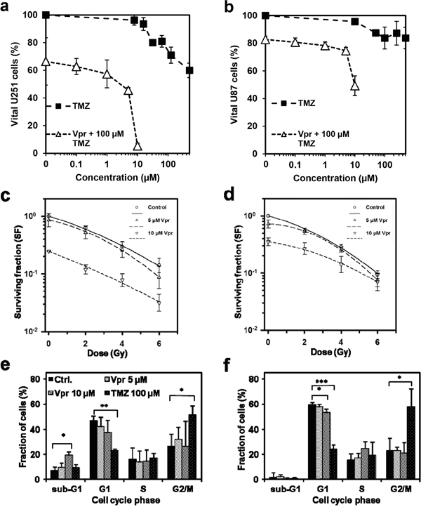 Vpr shows additive effects in combination with TMZ and RT and inhibits clonogenic survival in glioma cells.