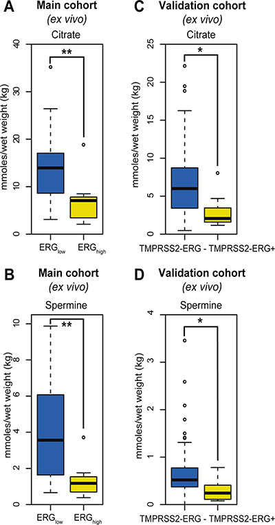 Box-plots for citrate and spermine comparing ERGhigh and ERGlow samples in the main cohort (ex vivo) and fusion positive and fusion negative patients in the validation cohort.