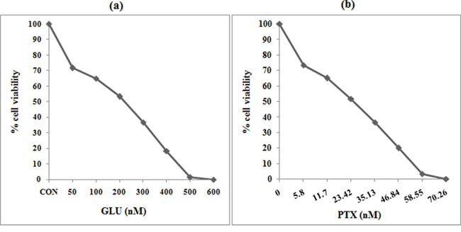 Cell viability was measured by MTT assay.