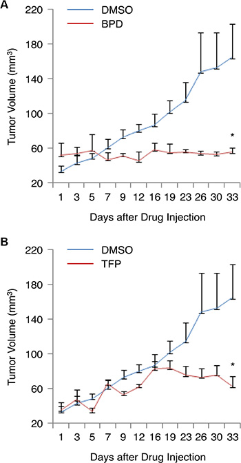BPD and TFP suppress the growth of TNBC tumors in the mouse tumor model.