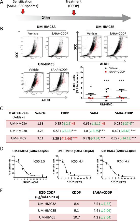 SAHA sensitizes tumor cells to Cisplatin.