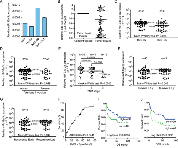 The down-regulation of miR-33a-3p was associated with metastases in hepatocellular carcinoma (HCC) cell lines and tumor tissues from hepatocellular carcinoma patients.