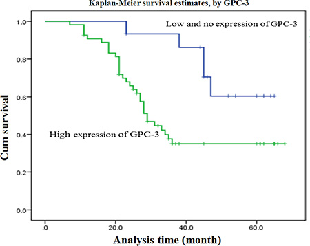 Overall survival curves of 69 patients with HCC.