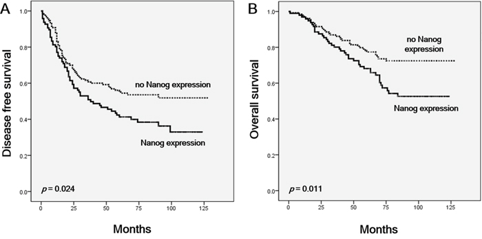 Kaplan-Meier curves showing survival among patients with and without Nanog expression in lung adenocarcinoma.