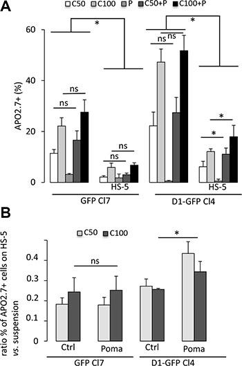 Cyclin D1 controls the sensitivity of cells to carfilzomib.