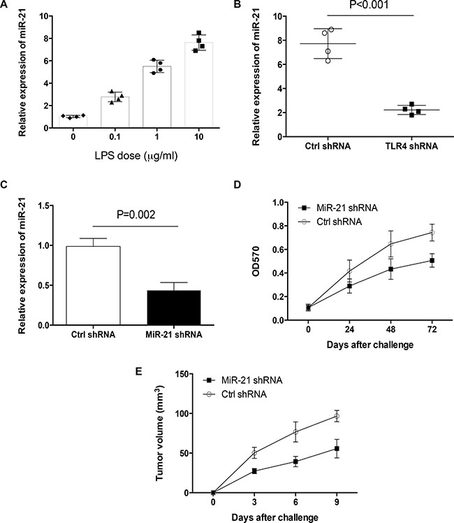 MiR-21 licensed LPS-mediated primary lung cancer outgrowth.