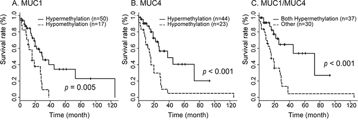 Correlation between MUC1 and/or MUC4 hypomethylation in neoplastic region status and overall survival in 98 patients with PDAC in stage IIA and IIB determined by the Kaplan-Meier method.