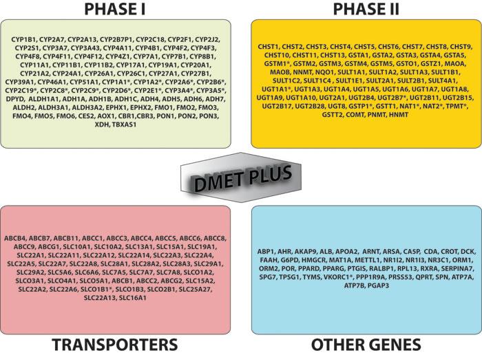 DMET gene list.