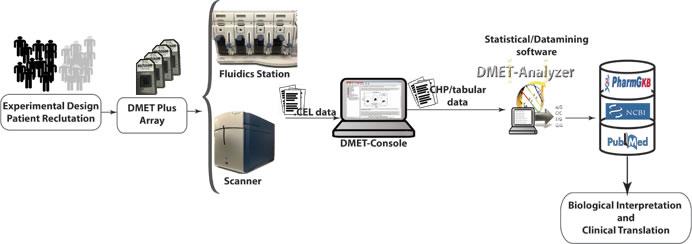 DMET data analysis workflow.