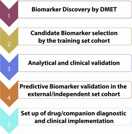 Biomarkers validation workflow.