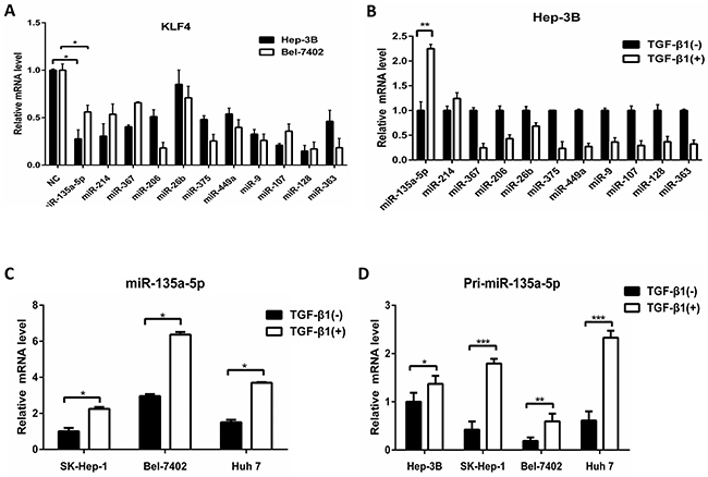Up-regulation of MicroRNA-135a-5p by TGF-β1.