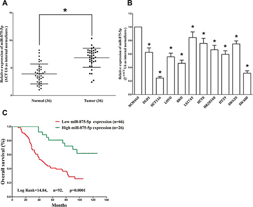 MiR-875-5p is down-regulated in primary human CRC and CRC cell lines, and benefits for prognosis.