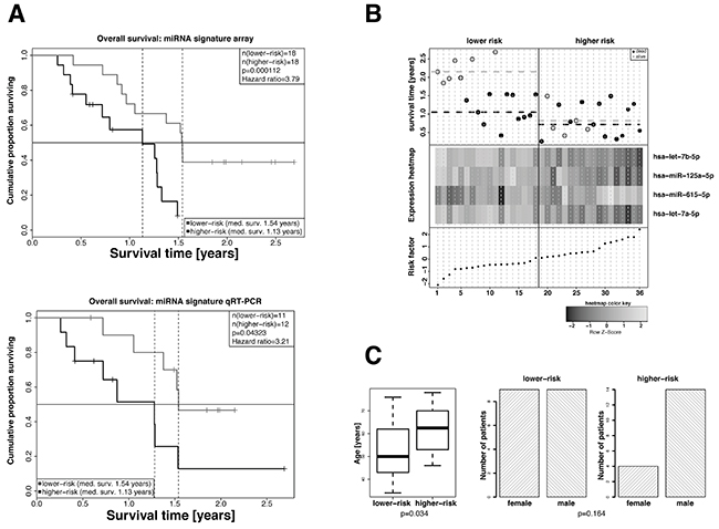 Extraction of a 4-miRNA signature as independent predictive marker for the overall survival of GBM patients in the exploratory cohort.