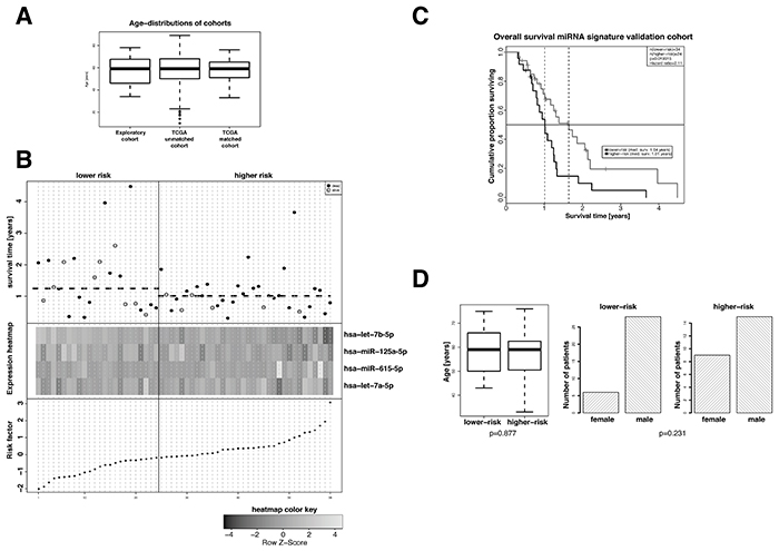 Evaluation of the prognostic value of the extracted 4-miRNA signature in an age- and sex-matched subgroup of standard-of-care treated patients of the TCGA GBM dataset.