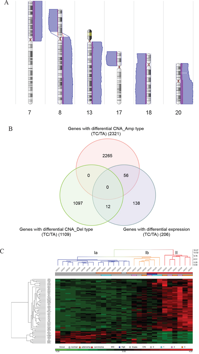 Identification of malignant transformation-related genes.