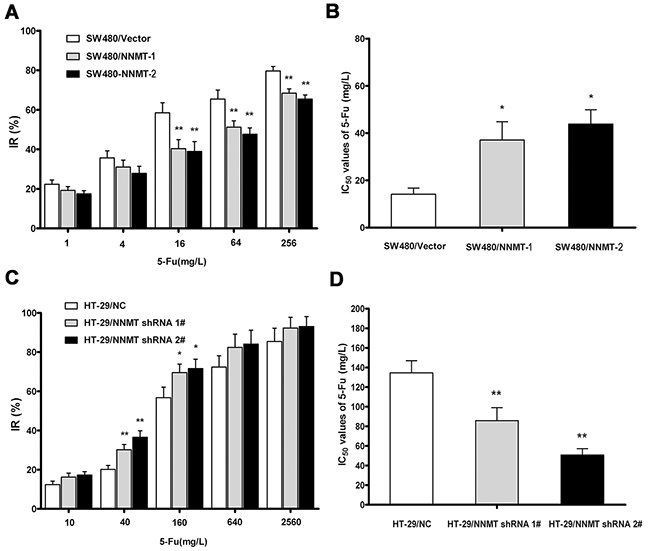 NNMT reduces sensitivity to 5-FU in CRC cells.