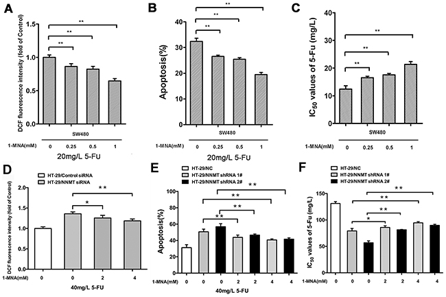 1-MNA attenuates ROS production and inhibits apoptosis after treatment with 5-FU to enhance resistance in CRC cells.