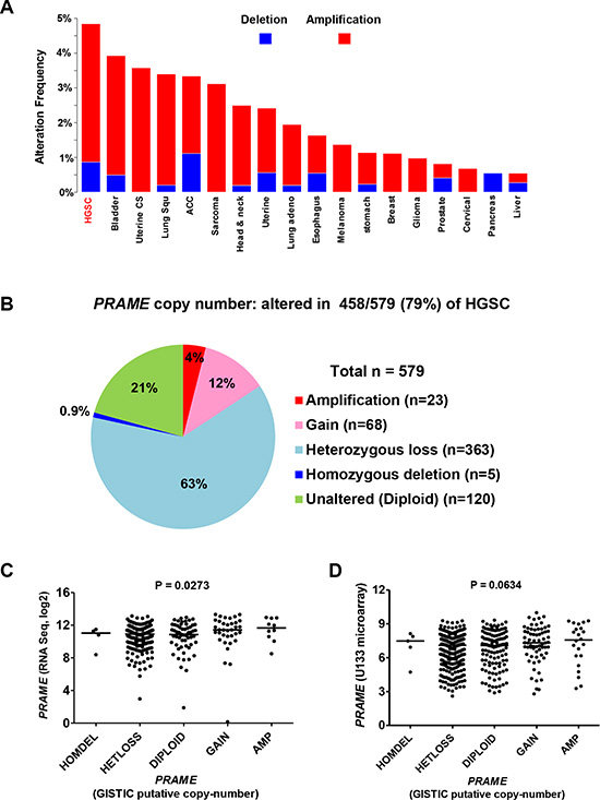 PRAME copy number and mRNA expression in HGSC.