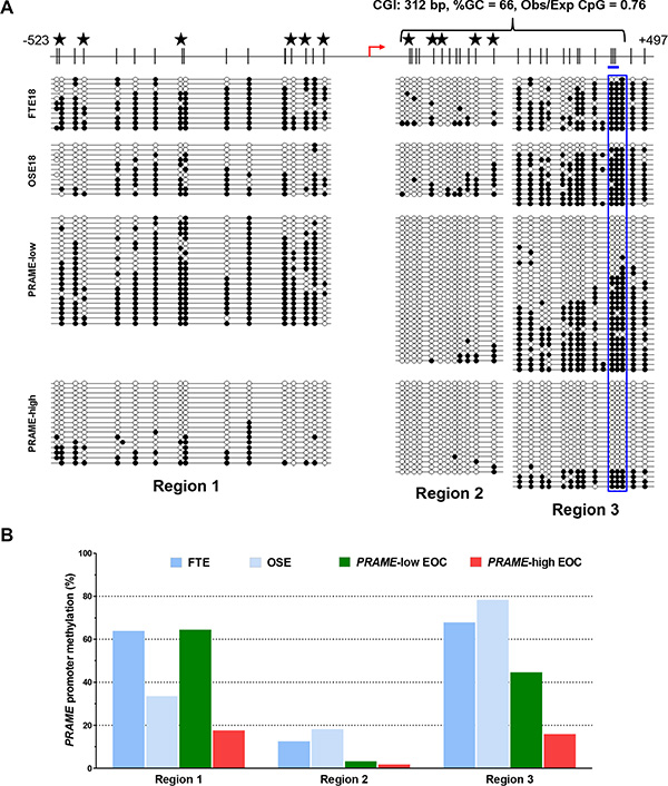 Sodium bisulfite clonal sequencing of the PRAME 5′ region.