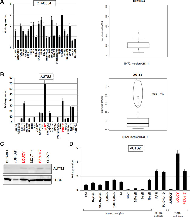 Expression analyses of STAG3L4 and AUTS2.
