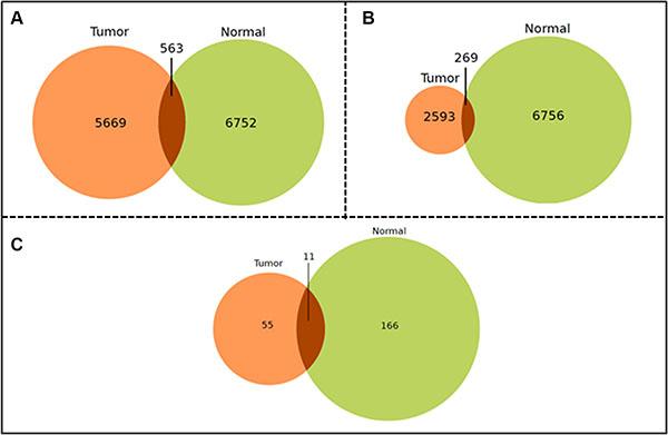 Venn-Diagrams of the shared miRNA-miRNA correlation pairs.