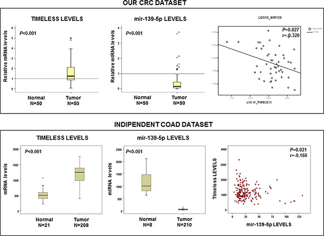 TIMELESS mRNA and miR-139-5p levels are inversely correlated in sporadic colorectal cancer.