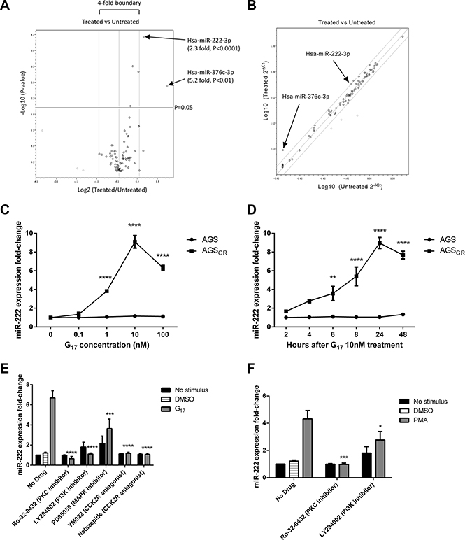 In AGSGR cells treated with 10nM G17 compared with untreated controls, miScript miRNA PCR arrays showed 3 miRNAs that increased and 3 miRNAs that decreased in expression beyond the 2-fold threshold, with only miR-222 and miR-376c proving significant.