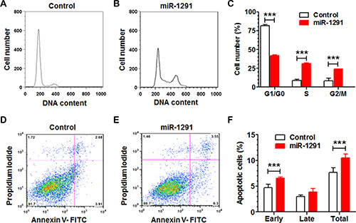 Reintroduction of miR-1291 into PANC-1 cells induces a G2/M cell cycle arrest and an enhanced apoptosis.