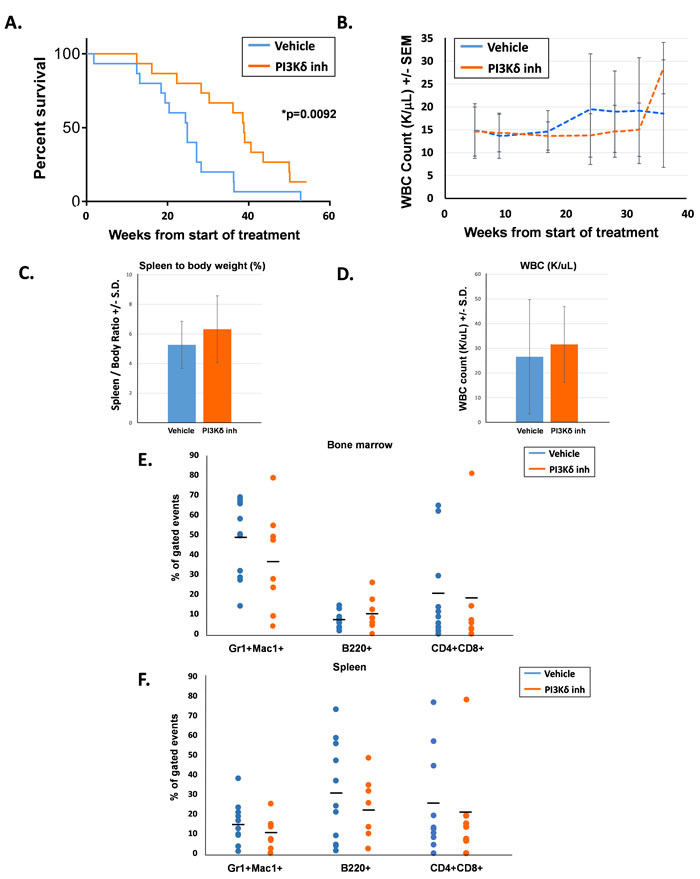 ALK RNA and protein levels increase after gefitinib