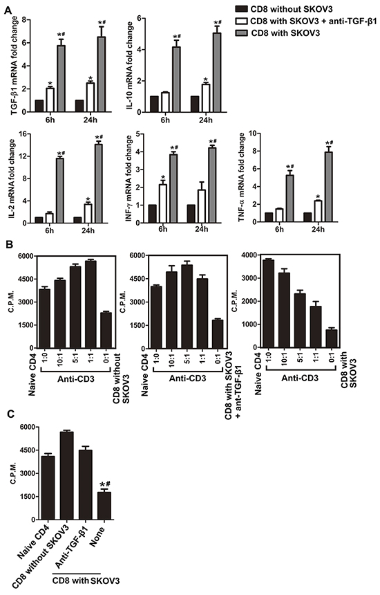 Blockade of TGF-β1 abrogates the suppressive function of CD8+ T cells in the co-culture system.