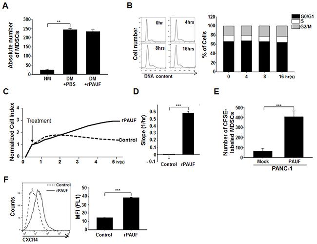 PAUF promotes MDSC migration into tumor tissues.