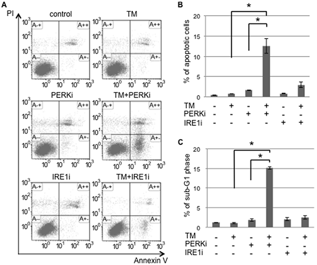 The PERK inhibitor induced tunicamycin-mediated apoptosis in cancer stem-like cells.