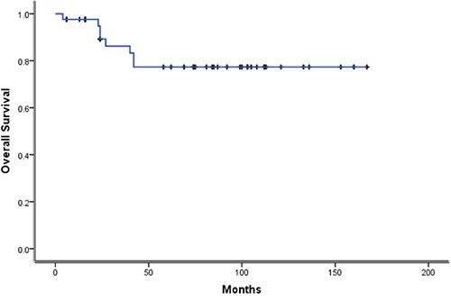 Kaplan-Meier survival Kaplan curves for Overall Survival of 42 cases.
