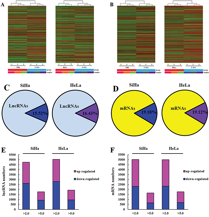 Oncotarget Comprehensive Analysis Of Lncrnas Microarray Profile
