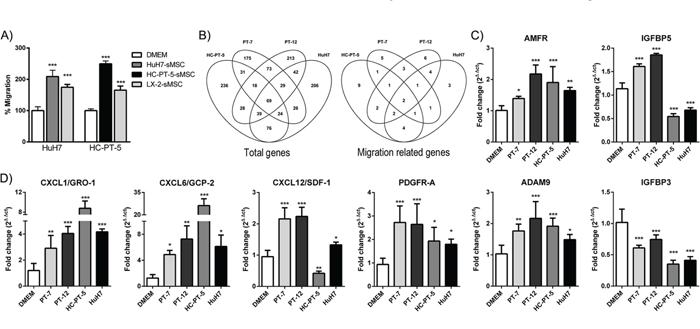 HCC CM enhanced MSC migratory capacity and induced changes in their gene expression pattern.