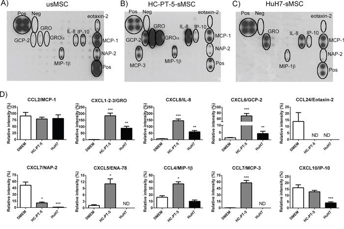 HCC CM modulated MSC chemokine profile. Antibody array of CM from unstimulated MSCs