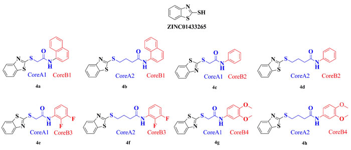 ZINC01433265 derivatives with high docking scores generated by core hopping.