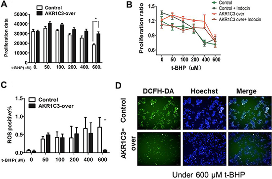 Mechanistic exploration of AKR1C3 as a cellular factor for protecting cells from irradiation damage.