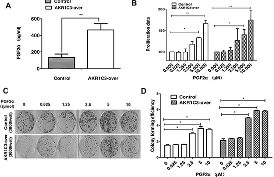 Overexpression of AKR1C3 in DU145 cells increases the amount of PGF2α.
