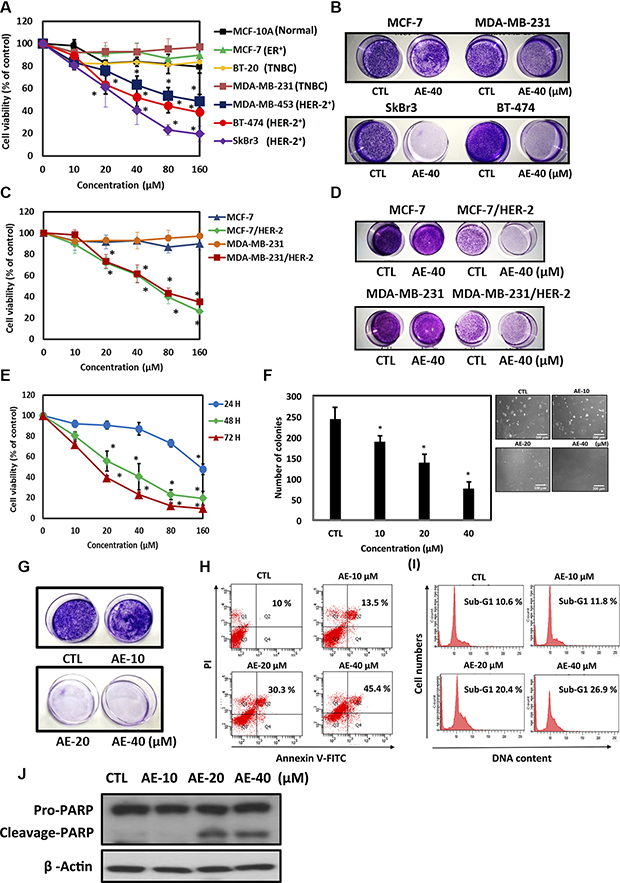 Aloe-emodin specifically inhibited cell proliferation and induced apoptosis in HER-2-overexpressing breast cancer cells.