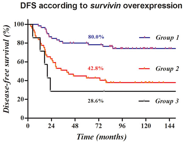 Kaplan-Meier survival curves according to a prognostic model based on survivin overexpression.