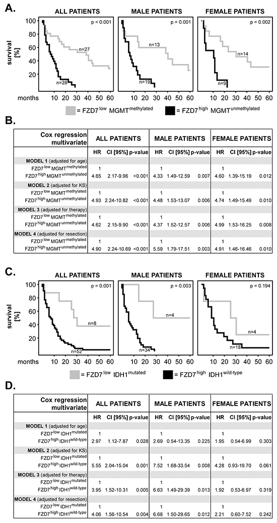 Combination of FZD7 with MGMT or IDH1: impact on patients' overall survival and sex differences.