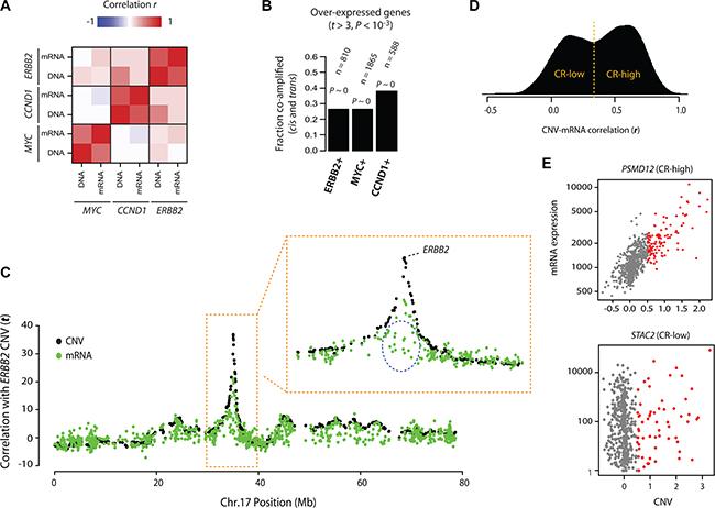 Patterns of onco-passenger gene expression.