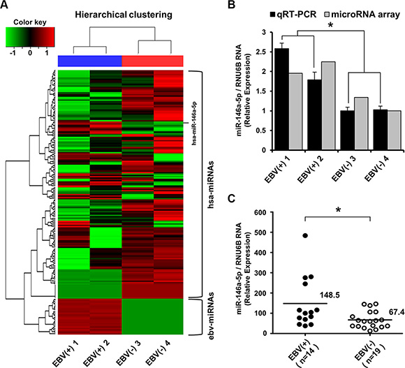 miRNA microarray expression profile and validation of miR-146a-5p level in surgically resected stomach cancer tissues.