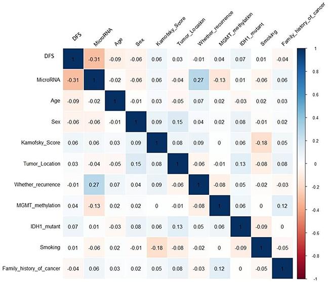 Correlation matrix of univariate association between miRNAs and other independent prognostic factors.